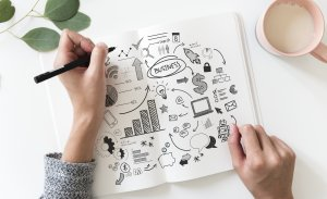 Revise Seu Plano de Negócios