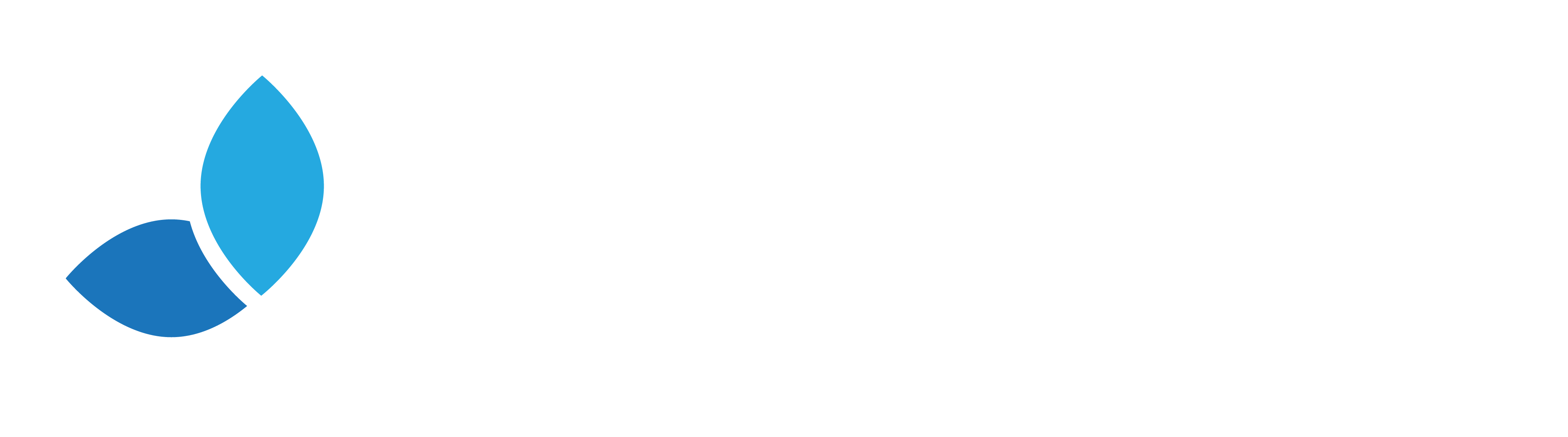 Efecta
